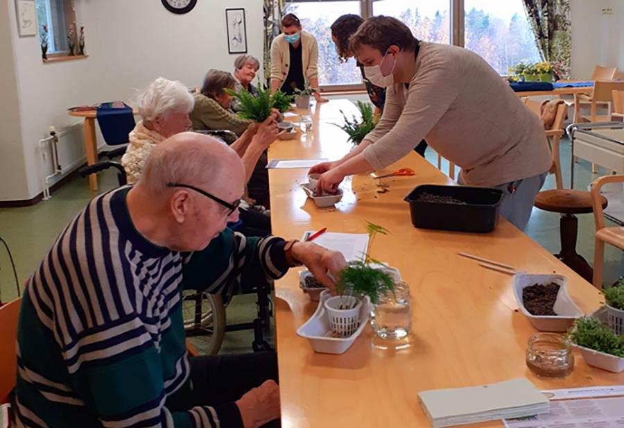 vanhuksia ja opiskelijoita pöydän ääressä istuttamassa kasveja